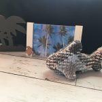 ゆるフォルムのサメちゃん プランドプーリングでサメのあみぐるみ